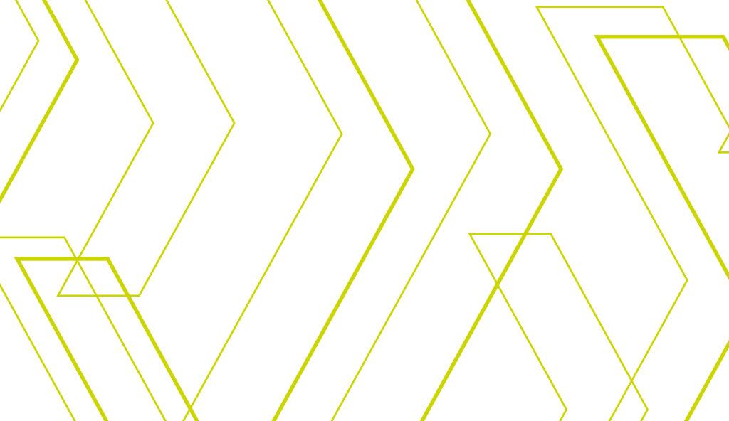 flexfuel-charte-2020-pattern